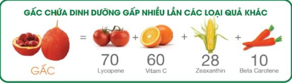 dinh dưỡng g3